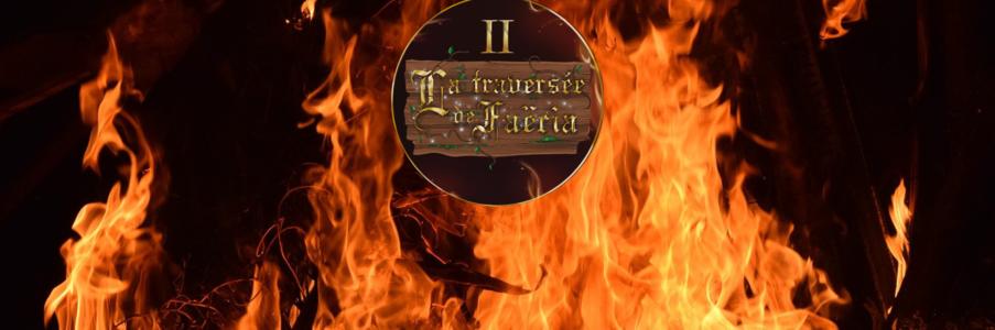Tome 2 – La pierre de feu (Vidéo)